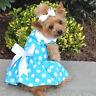 Dog HARNESS DRESS & LEASH - Blue Polka Dot - Doggie Design 2 Piece