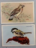 2 Vintage Kellogg's Krumbles Shredded Wheat Bran Flakes Bird Pictures