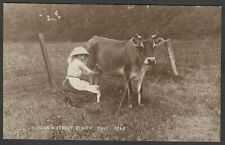 Postcard Jersey Channel Islands cow Milking a Jersey Beauty milk 1913 RP by JWS
