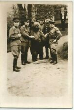 1940s Handsome men officers taxidermy stuffed bear Germany Soviet Russian photo
