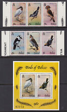 BELIZE :1980 Birds series 4 set + Min Sheet SG561-6+MS567 MNH