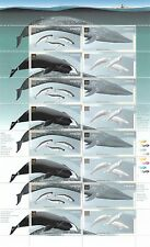 Canada 2000 Whale & Dolphin stamp full sheet of 16 stamps CA157146