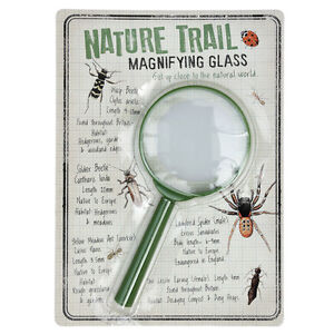 Rex London NATURE TRAIL CHILDRENS GREEN PLASTIC MAGNIFYING GLASS