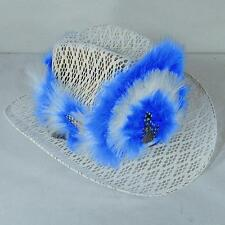 12 ASST COWBOY HAT FEATHER HEAD BANDS novelty feathers new band for hats HT10