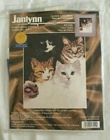 Cats' Eye Janlynn Counted Cross Stitch Kit #13-249 NIP