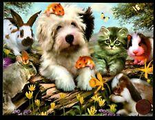 Dog Kitten Cat Rabbits Hamsters Chinchilla Guinea Pig - Greeting Card New