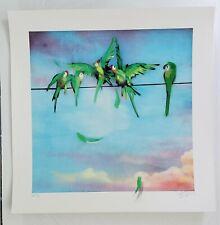 Xenz SQUABBLE Hand Finished AP COA birds art print Upfest