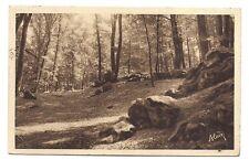 villers-cotterets    la forêt  les roches