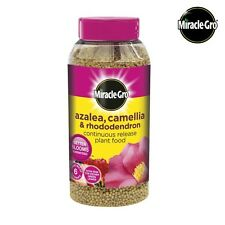 Miracle Gro Azalea, Camellia & Rhododendron Continuous Release Plant Food 1kg