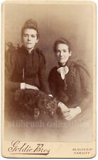 MAIN COON CAT huge TABBY CAT on lap of two beauty SISTERS antique CDV PHOTO