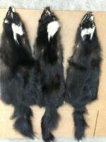 Tanned Nearly Black Eastern Canadian Grade #1 Skunks – Minnesota Brand