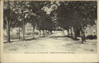 Braintree MA Hollis Ave c1910 Postcard