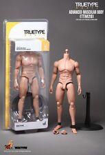 Hot Toys 1:6 scale TTM20 TrueType Basic Advanced Muscular Body TTM-20