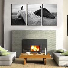 HD Canvas Print home decor wall art painting,Black & White Horse 3p(no stretch)@