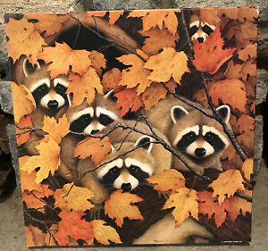 Vintage 1979 Springbok 500 PC Piece Jigsaw Puzzle Roving Rascals Raccoon Fall