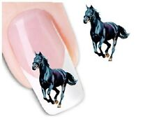 Nail Art Sticker Water Decals Transfer Stickers Decorative Black Horse (DX1555)