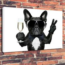 """COOL Bulldog Francese Scatola stampata foto su tela A1.30""""x20"""" - 30 mm telaio in profondità"""