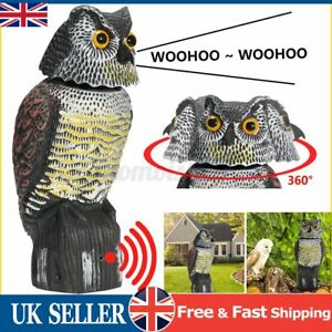 Rotating Owl Decoy Deterrent Head Realistic Bird Pigeon Crow Sound Scarer Statue
