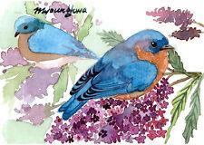 ACEO print of an original watercolor-Bluebird on Lilac, Bluebird art print