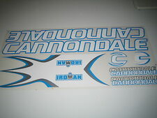 Cannondale Iroman Stickers White, Blue & Silver.