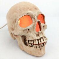 Vintage Halloween Skull Ceramic Light Up Decoration Decor 1980's Hand Painted