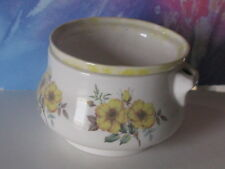 Med White With Yellow Accent And Flowers African Violet Ceramic Pot/Planter