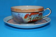 Vintage Japan Hand Painted Opalescent Tea Cup & Saucer Set