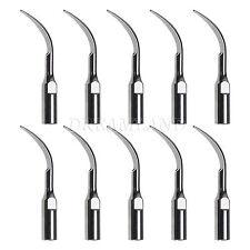 10x Dentale Scaler Scaling Tip GD1 fit DTE Satelec Handpiece dentista x dentist