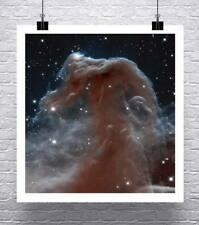Horsehead Nebula Hubble Deep Space Image Rolled Canvas Giclee Print 24x24 in.