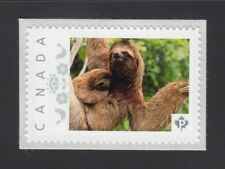 THREE TOED SLOTH. WILD LIFE ANIMALS Canada Picture Postage stamp  p72WL10/8