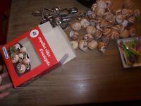 Boite et 48 Coquilles à Persillade  d'escargot neuves Pique et Pince