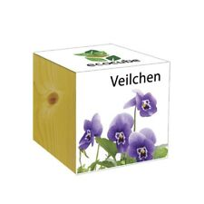 ecocube Holzwürfel - Veilchen