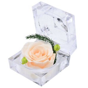 Eternal Preserved Real Rose Flower Acrylic Crystal Box Valentine's Day Gift