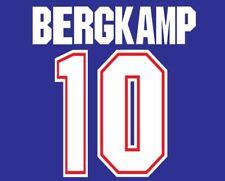 Bergkamp #10 Arsenal 1995-1996 Away Football Nameset for shirt