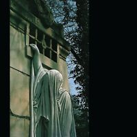 DEAD CAN DANCE - WITHIN THE REALM OF A DYING SUN   VINYL LP NEU