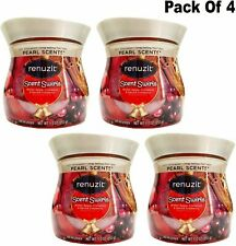 Renuzit Scents Swirls Odor Neutralizer, Winter Apple, Cinnamon & Spiced...