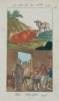 Die Kuh und das Kalb   Das Schlachtfest', 19. Jh., kolorierte Radierung