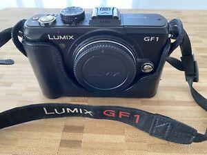Panasonic Lumix DMC-GF1 Mirrorless Micro Four Thirds Digital Camera and Case