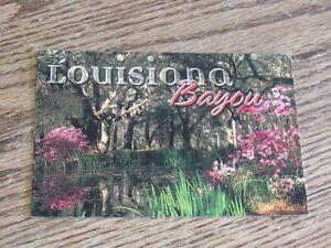 Louisiana Bayou Postcard (HWBS)