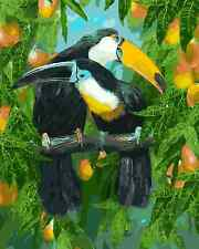 Paint By Numbers Kit Canvas 50*40cm 8107 Toucan Mates AU Stock S7