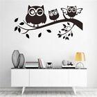 Owl Birds Branch Pvc Removable Diy Decal Art Wall Sticker Kids Home Decor Sl