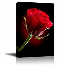 "Canvas Prints - Closeup of Red Rose Flower Against Black Background - 16"" x 24"""