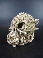 Calavera Calamar Calavera, 13cm Poli Figura Modelo Nuevo