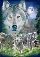 5D Diamond Painting Part Drill Wolf Group DIY Embroidery Cross Stitch Kit Decor