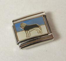 Husky Dog Italian 9mm Bracelet Charm Stainless Steel UW Mascot Washington Alaska