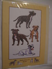 CARTE + ENVELOPPE - chien   STAFFORDSHIRE