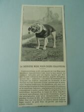 La dernière mode pour chiens chauffeurs Lunette manteaux  1904 Image Print