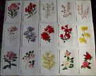 15 Ancienne Affiches Scolaire Botanique 1972 Camellia Japonica,Rhododendron