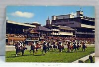 York Racecourse  VINTAGE  Postcard