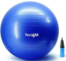 Yoga Ball Blue Free pump 3 sizes available & free shipping!